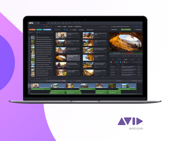 Avid announcement featured