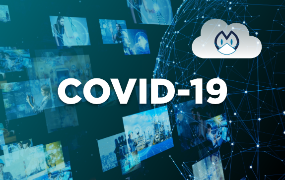 Wildmoka's measures to maintain business continuity during COVID 19